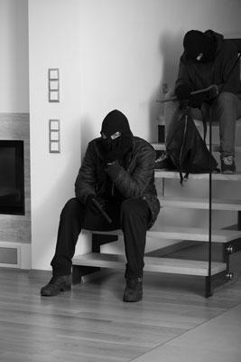 dumb-burglars-brief-history