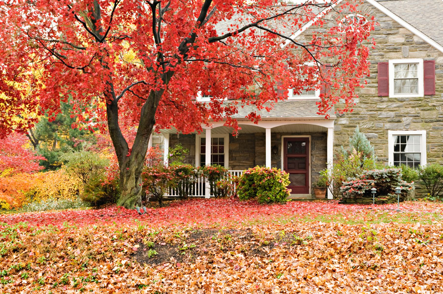 Fall Home Security Tips Circle City Security Systems
